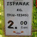 Ispanağın fiyatı yüzde 50 düştü, yine de tezgahta kaldı